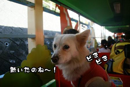 14_20111113230408.jpg