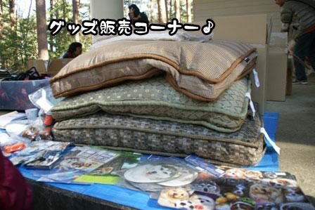 14_20111210192451.jpg
