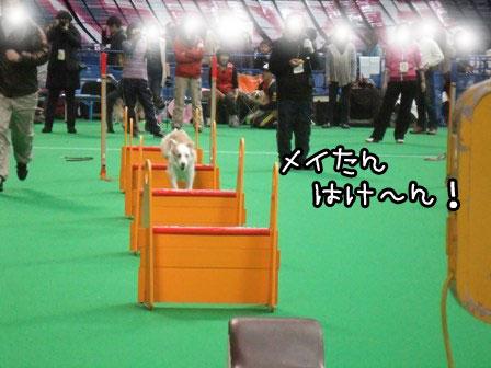 14_20120124211708.jpg