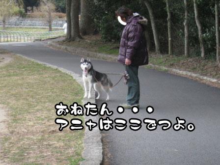 15_20110306200704.jpg