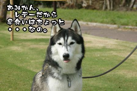 15_20111004210653.jpg