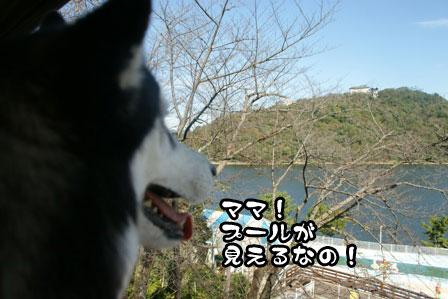 15_20111113230415.jpg
