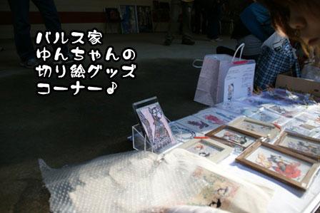 15_20111210192457.jpg