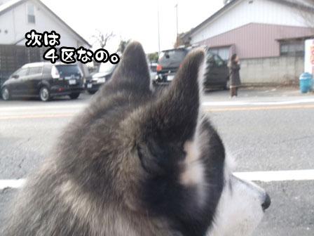 15_20120106200752.jpg