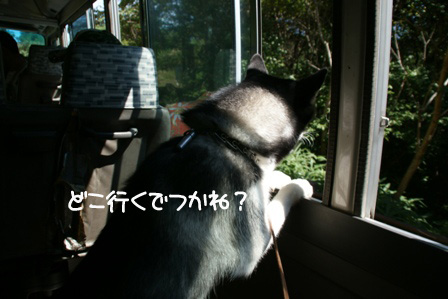 16_20100927125006.jpg