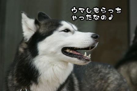 16_20111001203945.jpg