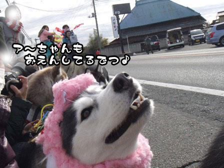 16_20120106200803.jpg