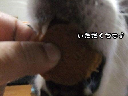 17_20111007204140.jpg