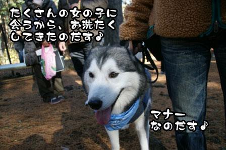 17_20111210192510.jpg