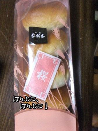 17_20120319184338.jpg