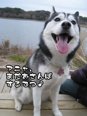 18_20110306200726.jpg