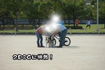18_20111002200258.jpg