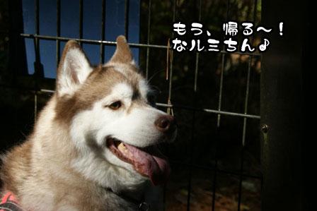 18_20111210192515.jpg
