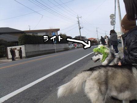 18_20120106200815.jpg