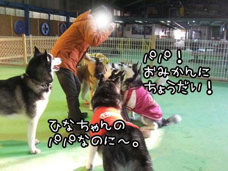 18_20120124211730.jpg