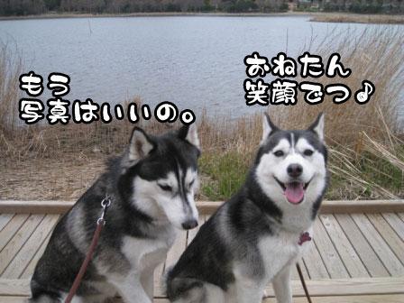 19_20110306200745.jpg