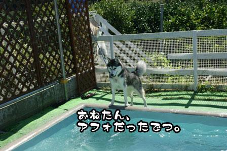 19_20110926211100.jpg