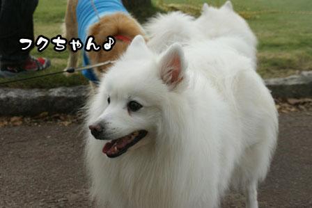 19_20111005205335.jpg