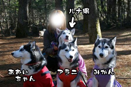 19_20111210192520.jpg
