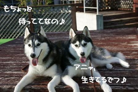 1_20100514221847.jpg