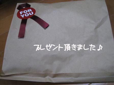 1_20101116224601.jpg