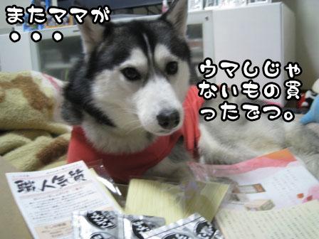 1_20110331210502.jpg