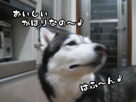 1_20110601214526.jpg