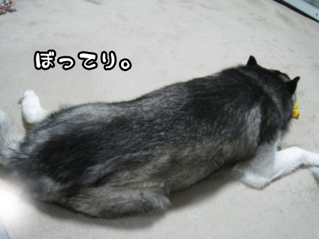 1_20110604234422.jpg