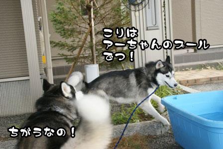 1_20110704210715.jpg