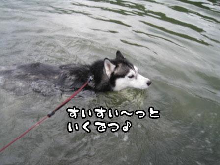 1_20110828213731.jpg