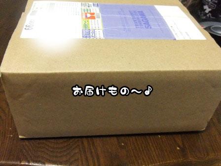 1_20110917202352.jpg