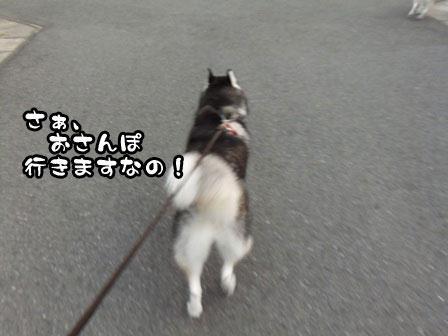 1_20110919201507.jpg