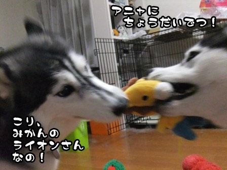 1_20111021212251.jpg