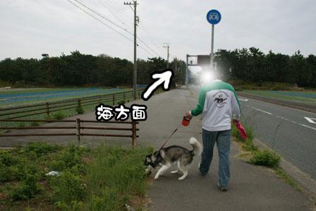 1_20111030220028.jpg
