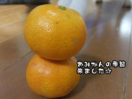 1_20111128212703.jpg