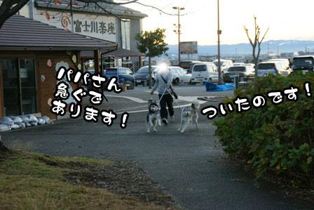 1_20111210192259.jpg