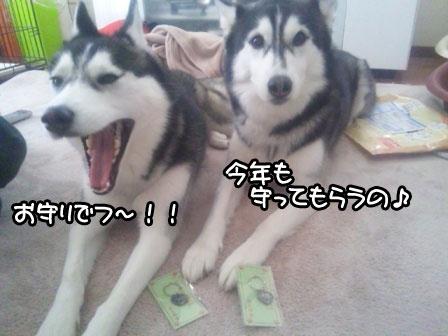 20_20110107202433.jpg