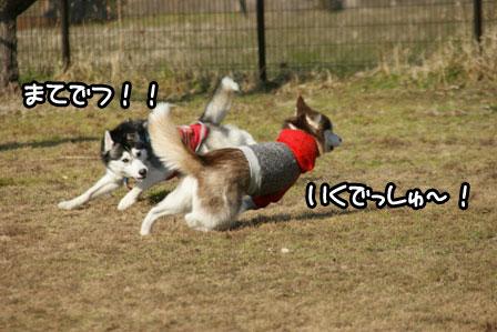 20_20110110205915.jpg