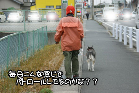 20_20110116235402.jpg