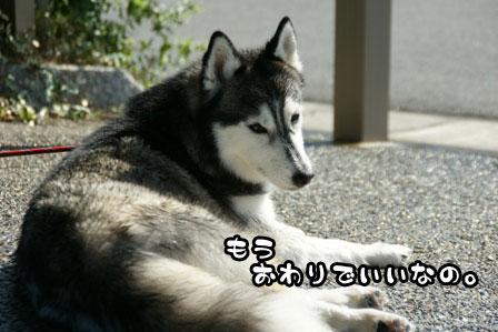 20_20110627215509.jpg