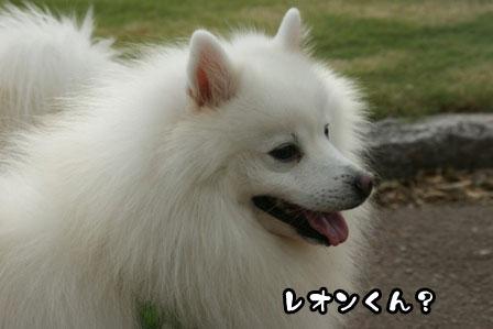 20_20111005205341.jpg