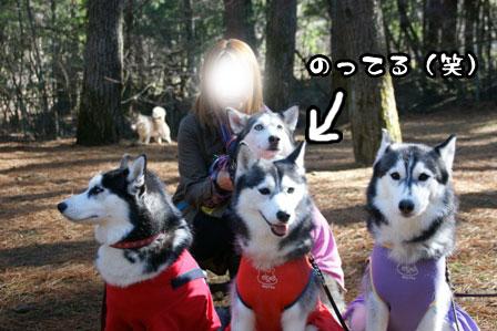 20_20111210192526.jpg