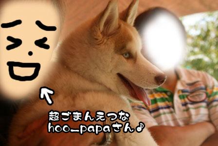 23_20111012212345.jpg