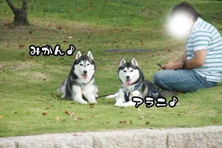24_20111003204410.jpg