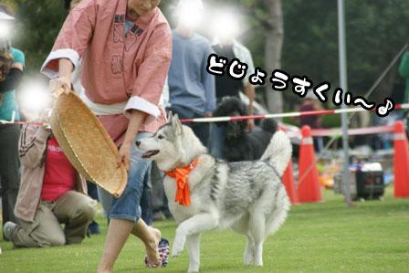 24_20111005205412.jpg