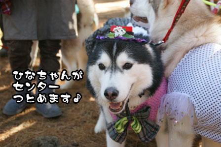 24_20111210192551.jpg