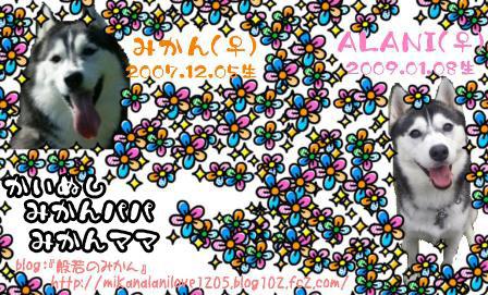 25_20110907211635.jpg
