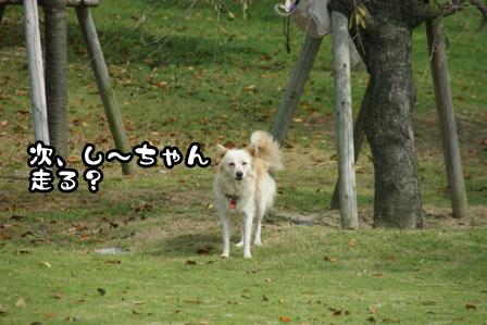 25_20111003204416.jpg