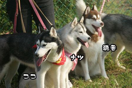 25_20111013210010.jpg