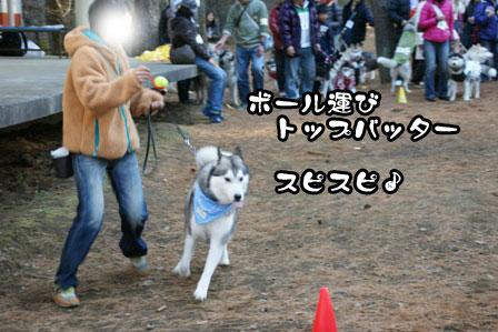 25_20111210192557.jpg